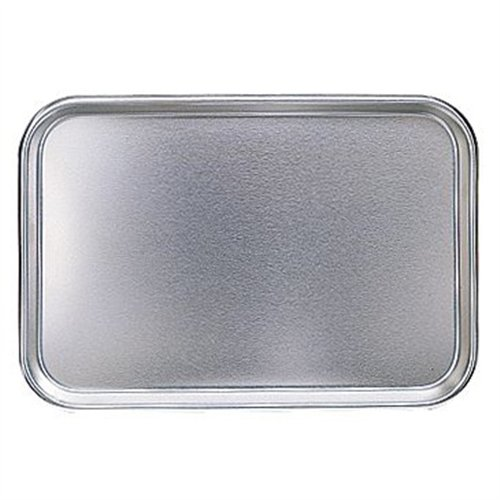 Stainless Steel Utility Tray (no holes)
